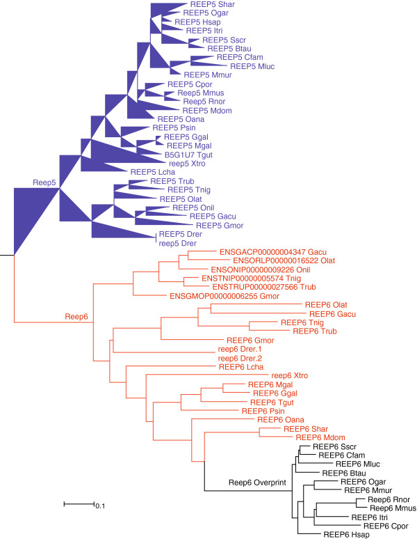 http://static-content.springer.com/image/art%3A10.1186%2F1471-2164-14-117/MediaObjects/12864_2012_4867_Fig8_HTML.jpg