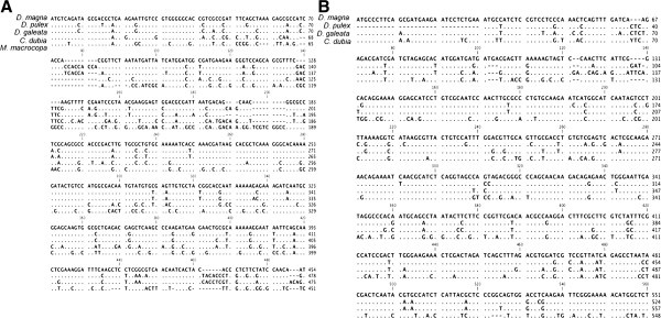 http://static-content.springer.com/image/art%3A10.1186%2F1471-2164-14-239/MediaObjects/12864_2012_4947_Fig1_HTML.jpg