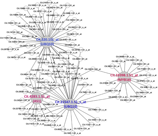 http://static-content.springer.com/image/art%3A10.1186%2F1471-2164-14-27/MediaObjects/12864_2012_4755_Fig6_HTML.jpg