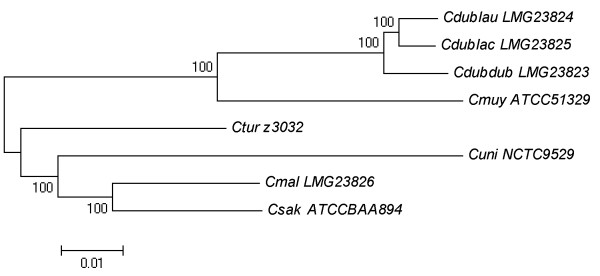 http://static-content.springer.com/image/art%3A10.1186%2F1471-2164-14-366/MediaObjects/12864_2012_5076_Fig1_HTML.jpg