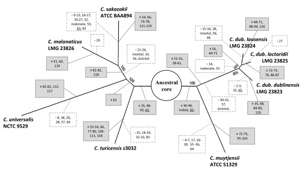 http://static-content.springer.com/image/art%3A10.1186%2F1471-2164-14-366/MediaObjects/12864_2012_5076_Fig2_HTML.jpg
