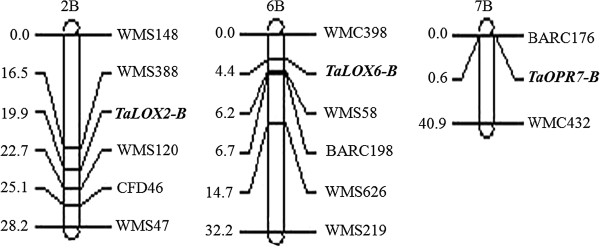 http://static-content.springer.com/image/art%3A10.1186%2F1471-2164-14-369/MediaObjects/12864_2013_5061_Fig5_HTML.jpg