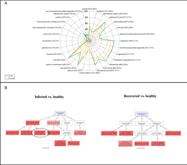 http://static-content.springer.com/image/art%3A10.1186%2F1471-2164-14-38/MediaObjects/12864_2012_4705_Fig5_HTML.jpg