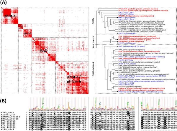 http://static-content.springer.com/image/art%3A10.1186%2F1471-2164-14-427/MediaObjects/12864_2013_5146_Fig5_HTML.jpg