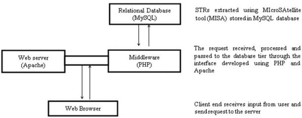 http://static-content.springer.com/image/art%3A10.1186%2F1471-2164-14-43/MediaObjects/12864_2012_4698_Fig1_HTML.jpg