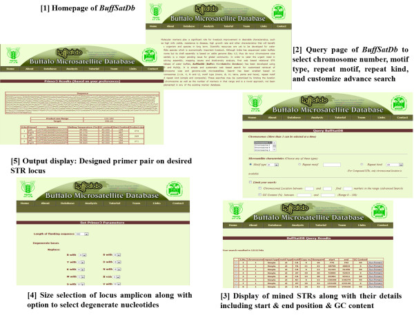http://static-content.springer.com/image/art%3A10.1186%2F1471-2164-14-43/MediaObjects/12864_2012_4698_Fig2_HTML.jpg