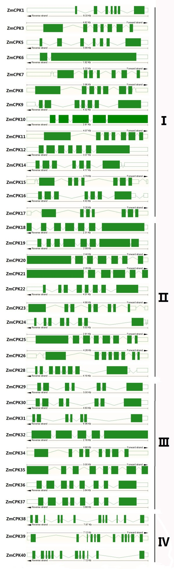 http://static-content.springer.com/image/art%3A10.1186%2F1471-2164-14-433/MediaObjects/12864_2012_5149_Fig2_HTML.jpg