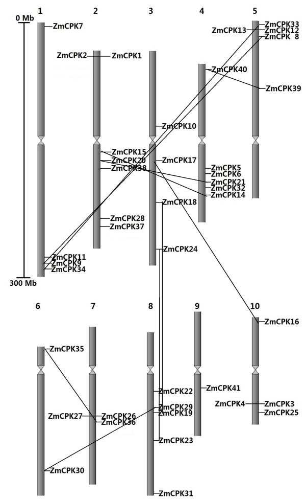 http://static-content.springer.com/image/art%3A10.1186%2F1471-2164-14-433/MediaObjects/12864_2012_5149_Fig3_HTML.jpg