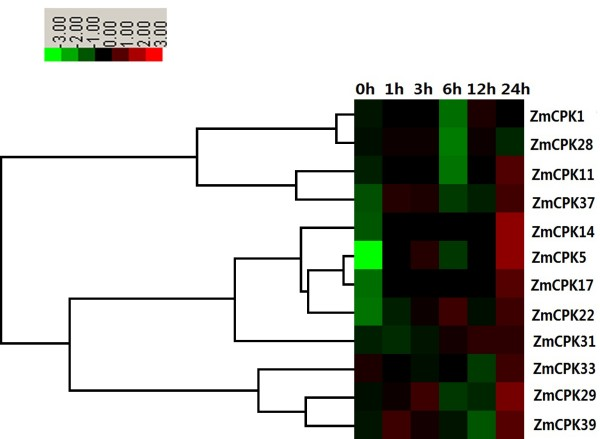 http://static-content.springer.com/image/art%3A10.1186%2F1471-2164-14-433/MediaObjects/12864_2012_5149_Fig8_HTML.jpg
