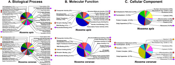 http://static-content.springer.com/image/art%3A10.1186%2F1471-2164-14-451/MediaObjects/12864_2013_5198_Fig8_HTML.jpg