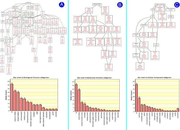 http://static-content.springer.com/image/art%3A10.1186%2F1471-2164-14-46/MediaObjects/12864_2011_4854_Fig3_HTML.jpg