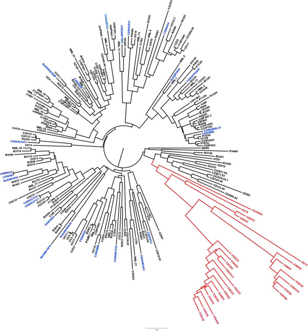 http://static-content.springer.com/image/art%3A10.1186%2F1471-2164-14-484/MediaObjects/12864_2012_5193_Fig4_HTML.jpg