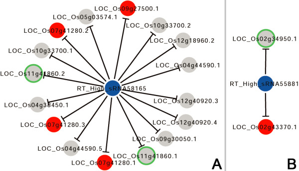 http://static-content.springer.com/image/art%3A10.1186%2F1471-2164-14-510/MediaObjects/12864_2013_5227_Fig4_HTML.jpg