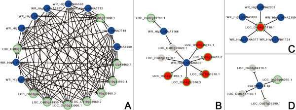http://static-content.springer.com/image/art%3A10.1186%2F1471-2164-14-510/MediaObjects/12864_2013_5227_Fig5_HTML.jpg
