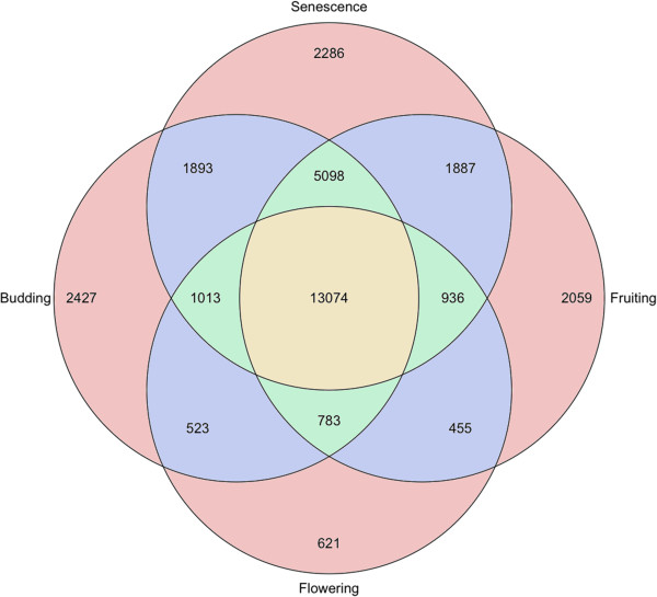 http://static-content.springer.com/image/art%3A10.1186%2F1471-2164-14-564/MediaObjects/12864_2013_5281_Fig5_HTML.jpg