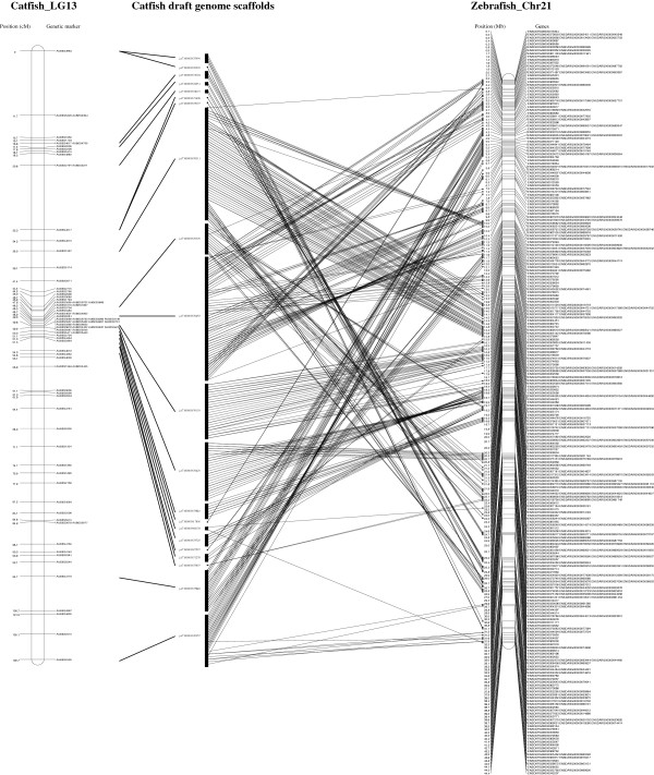 http://static-content.springer.com/image/art%3A10.1186%2F1471-2164-14-780/MediaObjects/12864_2013_5498_Fig3_HTML.jpg