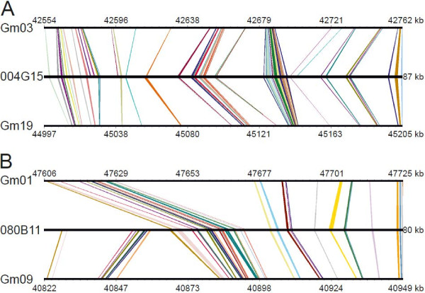 http://static-content.springer.com/image/art%3A10.1186%2F1471-2164-14-79/MediaObjects/12864_2012_4877_Fig4_HTML.jpg