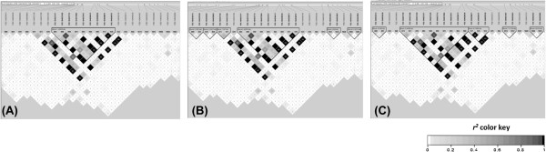 http://static-content.springer.com/image/art%3A10.1186%2F1471-2164-14-877/MediaObjects/12864_2013_5576_Fig8_HTML.jpg