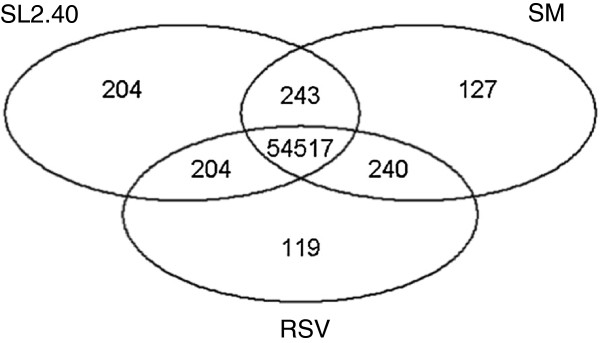 http://static-content.springer.com/image/art%3A10.1186%2F1471-2164-15-138/MediaObjects/12864_2013_5771_Fig3_HTML.jpg