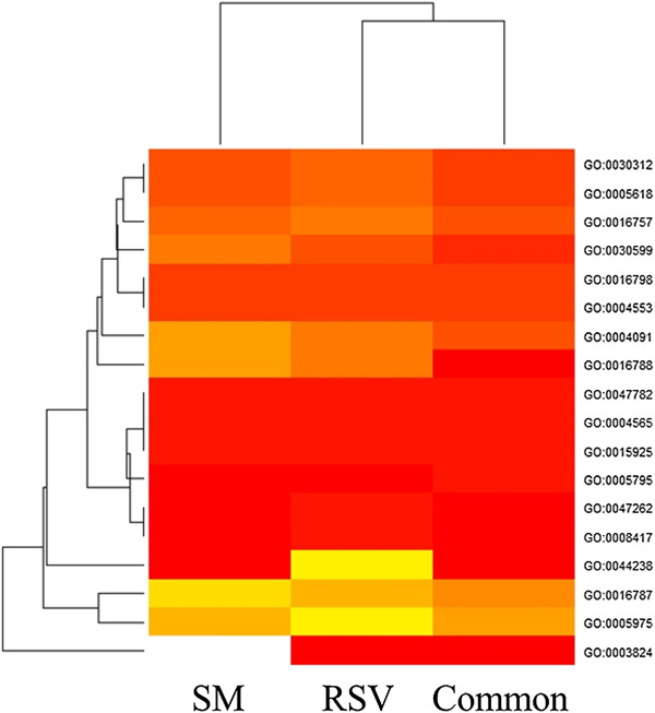 http://static-content.springer.com/image/art%3A10.1186%2F1471-2164-15-138/MediaObjects/12864_2013_5771_Fig5_HTML.jpg