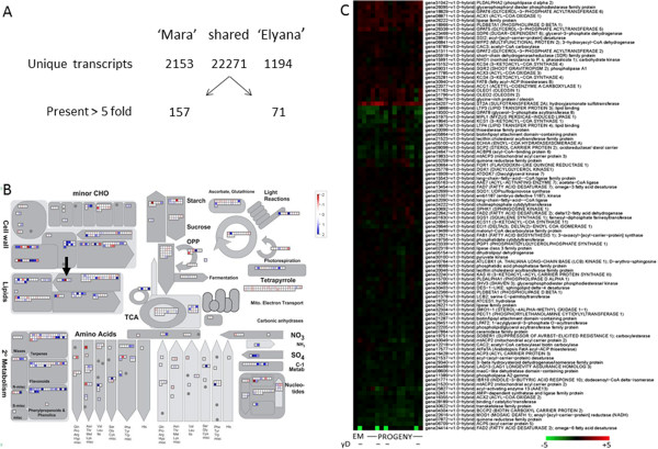 http://static-content.springer.com/image/art%3A10.1186%2F1471-2164-15-217/MediaObjects/12864_2013_5926_Fig3_HTML.jpg