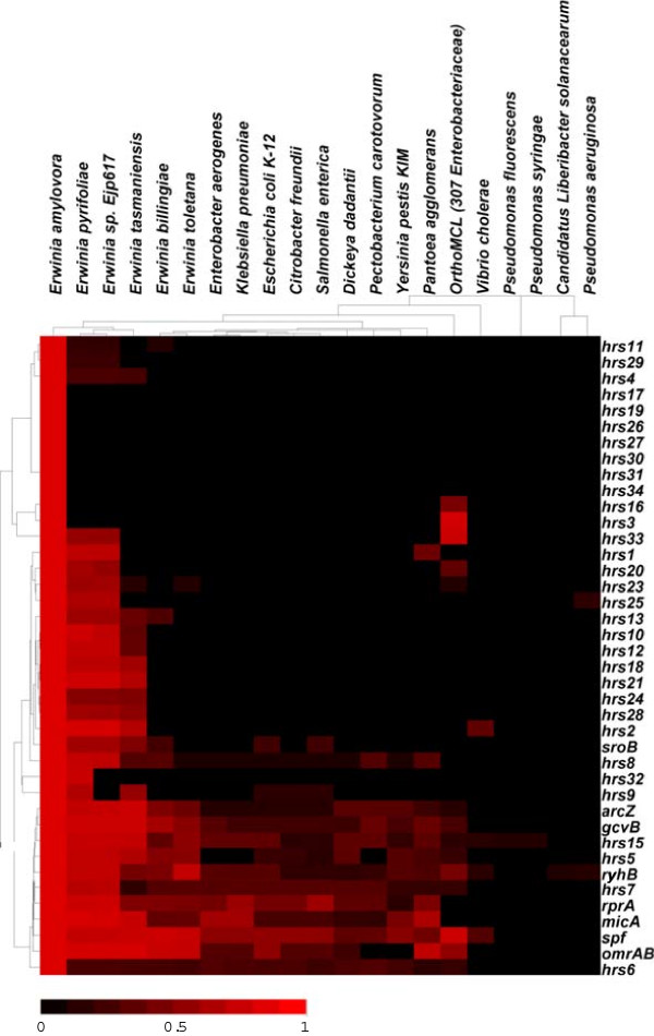 http://static-content.springer.com/image/art%3A10.1186%2F1471-2164-15-414/MediaObjects/12864_2014_6148_Fig3_HTML.jpg