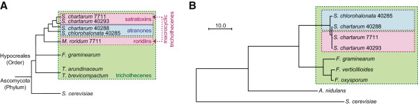http://static-content.springer.com/image/art%3A10.1186%2F1471-2164-15-590/MediaObjects/12864_2013_6290_Fig2_HTML.jpg