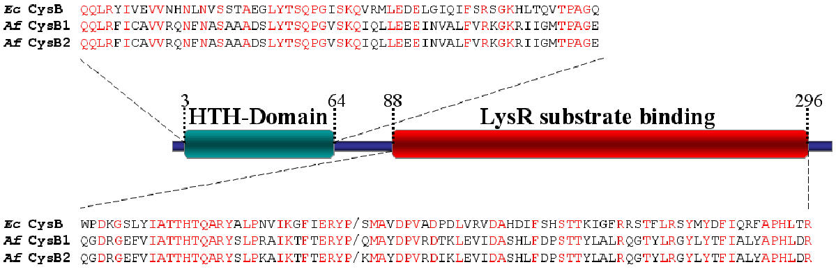 http://static-content.springer.com/image/art%3A10.1186%2F1471-2164-4-51/MediaObjects/12864_2003_Article_100_Fig5_HTML.jpg