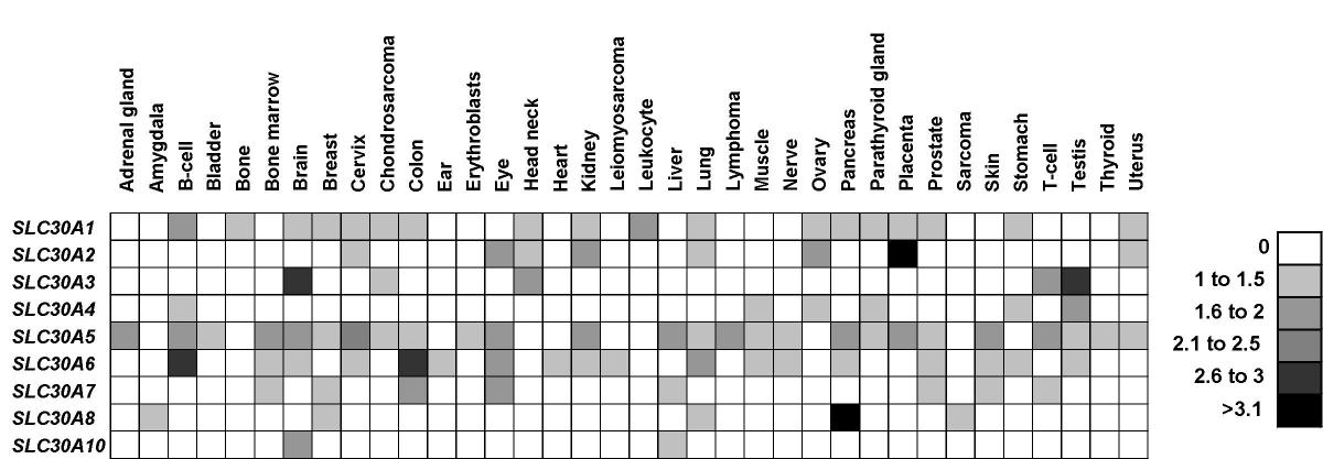 http://static-content.springer.com/image/art%3A10.1186%2F1471-2164-5-32/MediaObjects/12864_2004_Article_134_Fig4_HTML.jpg