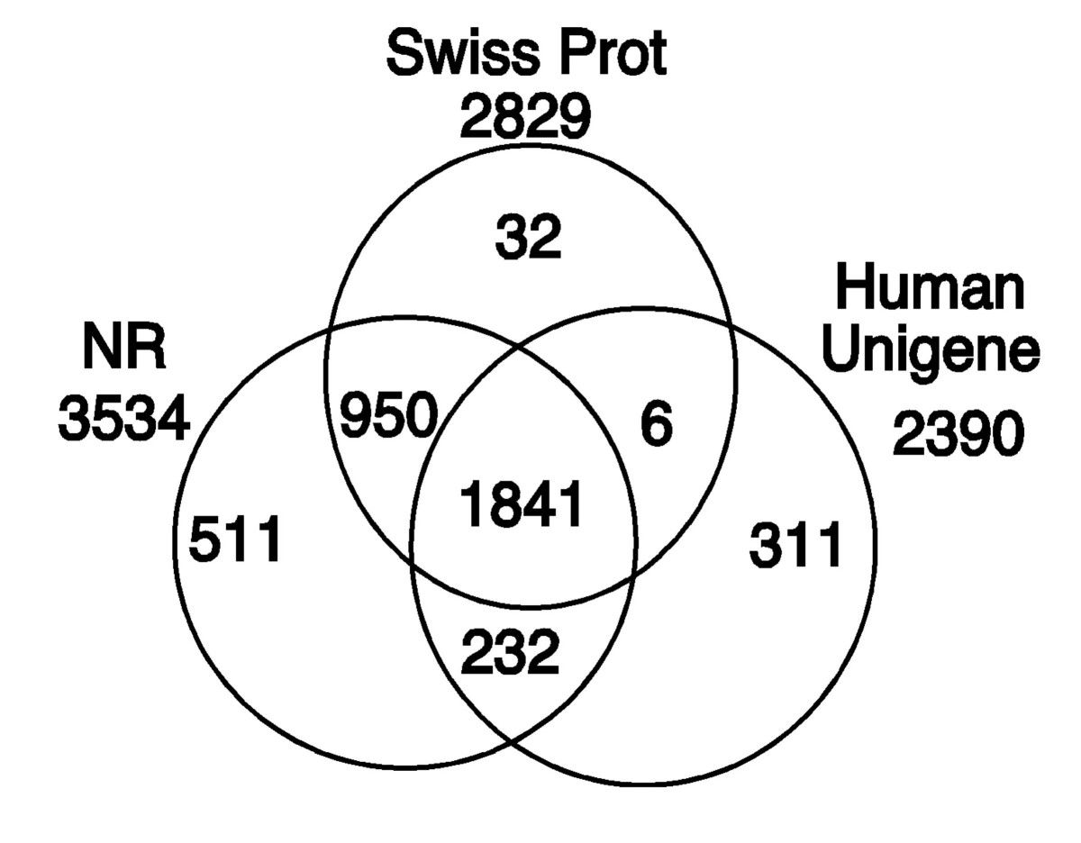 http://static-content.springer.com/image/art%3A10.1186%2F1471-2164-5-96/MediaObjects/12864_2004_Article_198_Fig4_HTML.jpg
