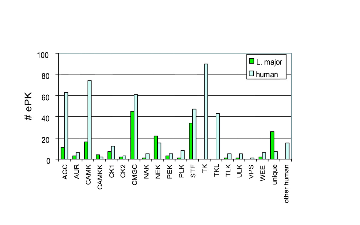 http://static-content.springer.com/image/art%3A10.1186%2F1471-2164-6-127/MediaObjects/12864_2005_Article_328_Fig3_HTML.jpg