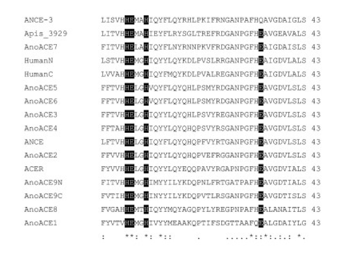 http://static-content.springer.com/image/art%3A10.1186%2F1471-2164-6-172/MediaObjects/12864_2005_Article_373_Fig4_HTML.jpg