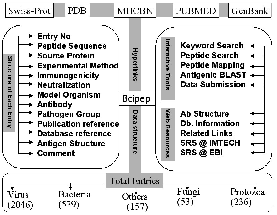http://static-content.springer.com/image/art%3A10.1186%2F1471-2164-6-79/MediaObjects/12864_2004_Article_280_Fig1_HTML.jpg