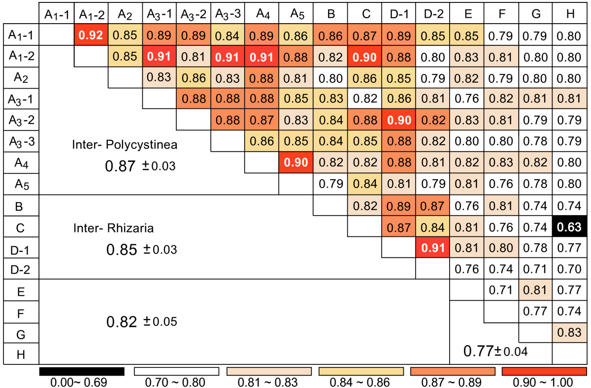 http://static-content.springer.com/image/art%3A10.1186%2F1471-2164-7-135/MediaObjects/12864_2005_Article_518_Fig2_HTML.jpg