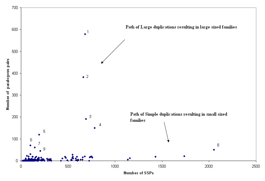 http://static-content.springer.com/image/art%3A10.1186%2F1471-2164-7-141/MediaObjects/12864_2006_Article_524_Fig3_HTML.jpg