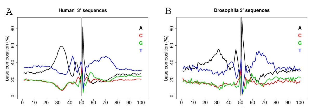 http://static-content.springer.com/image/art%3A10.1186%2F1471-2164-7-176/MediaObjects/12864_2005_Article_559_Fig2_HTML.jpg