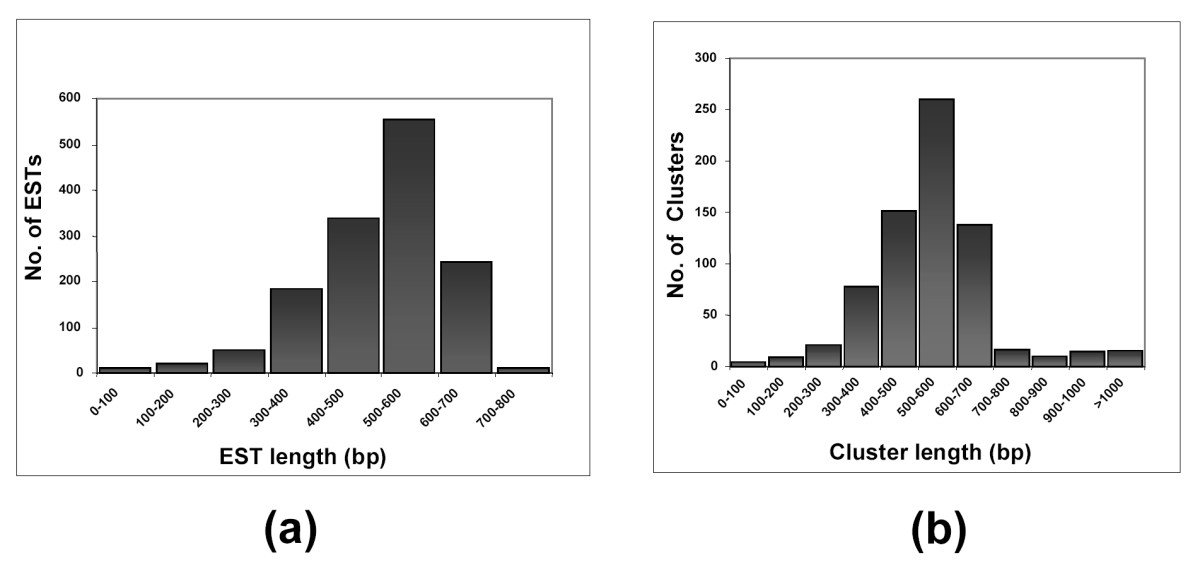 http://static-content.springer.com/image/art%3A10.1186%2F1471-2164-7-184/MediaObjects/12864_2006_Article_567_Fig1_HTML.jpg