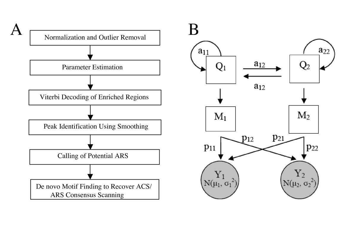 http://static-content.springer.com/image/art%3A10.1186%2F1471-2164-7-276/MediaObjects/12864_2006_Article_659_Fig1_HTML.jpg