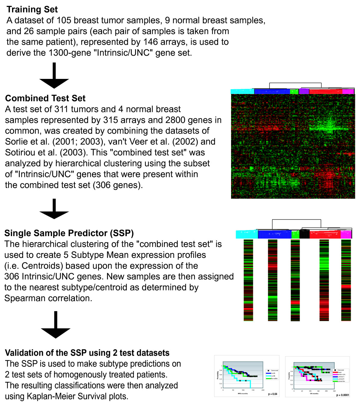 http://static-content.springer.com/image/art%3A10.1186%2F1471-2164-7-96/MediaObjects/12864_2006_Article_479_Fig1_HTML.jpg