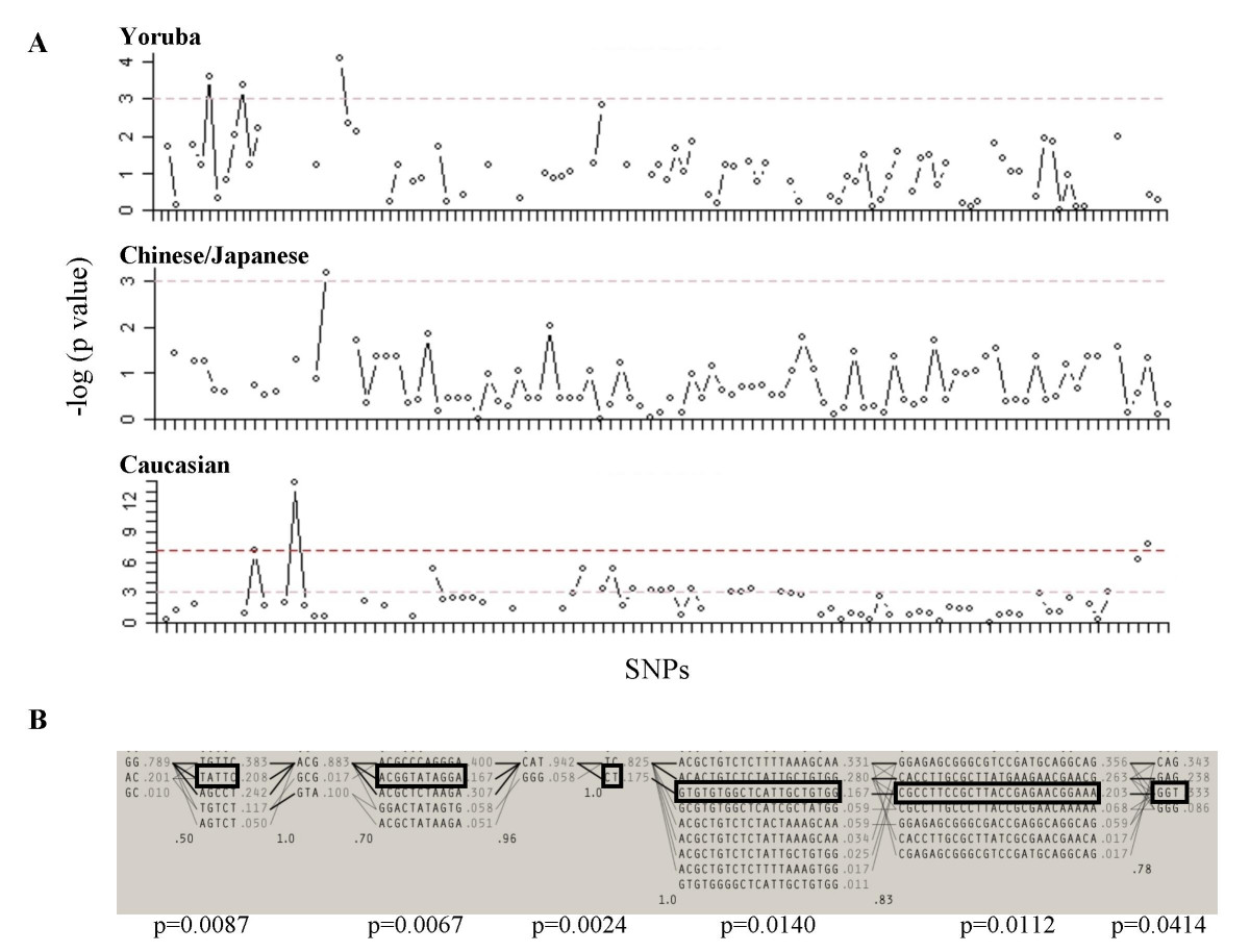 http://static-content.springer.com/image/art%3A10.1186%2F1471-2164-8-14/MediaObjects/12864_2006_Article_727_Fig4_HTML.jpg