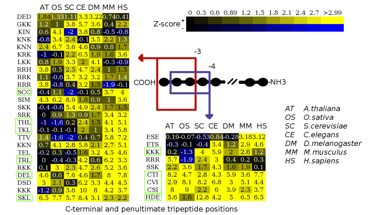 http://static-content.springer.com/image/art%3A10.1186%2F1471-2164-8-191/MediaObjects/12864_2006_Article_904_Fig4_HTML.jpg