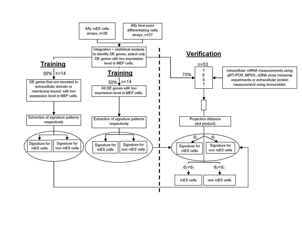 http://static-content.springer.com/image/art%3A10.1186%2F1471-2164-8-210/MediaObjects/12864_2006_Article_923_Fig1_HTML.jpg