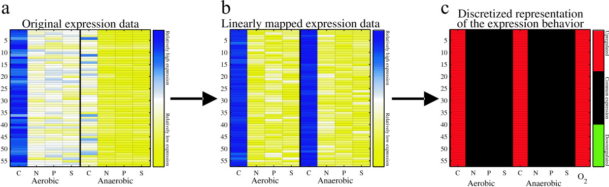 http://static-content.springer.com/image/art%3A10.1186%2F1471-2164-8-25/MediaObjects/12864_2006_Article_738_Fig3_HTML.jpg