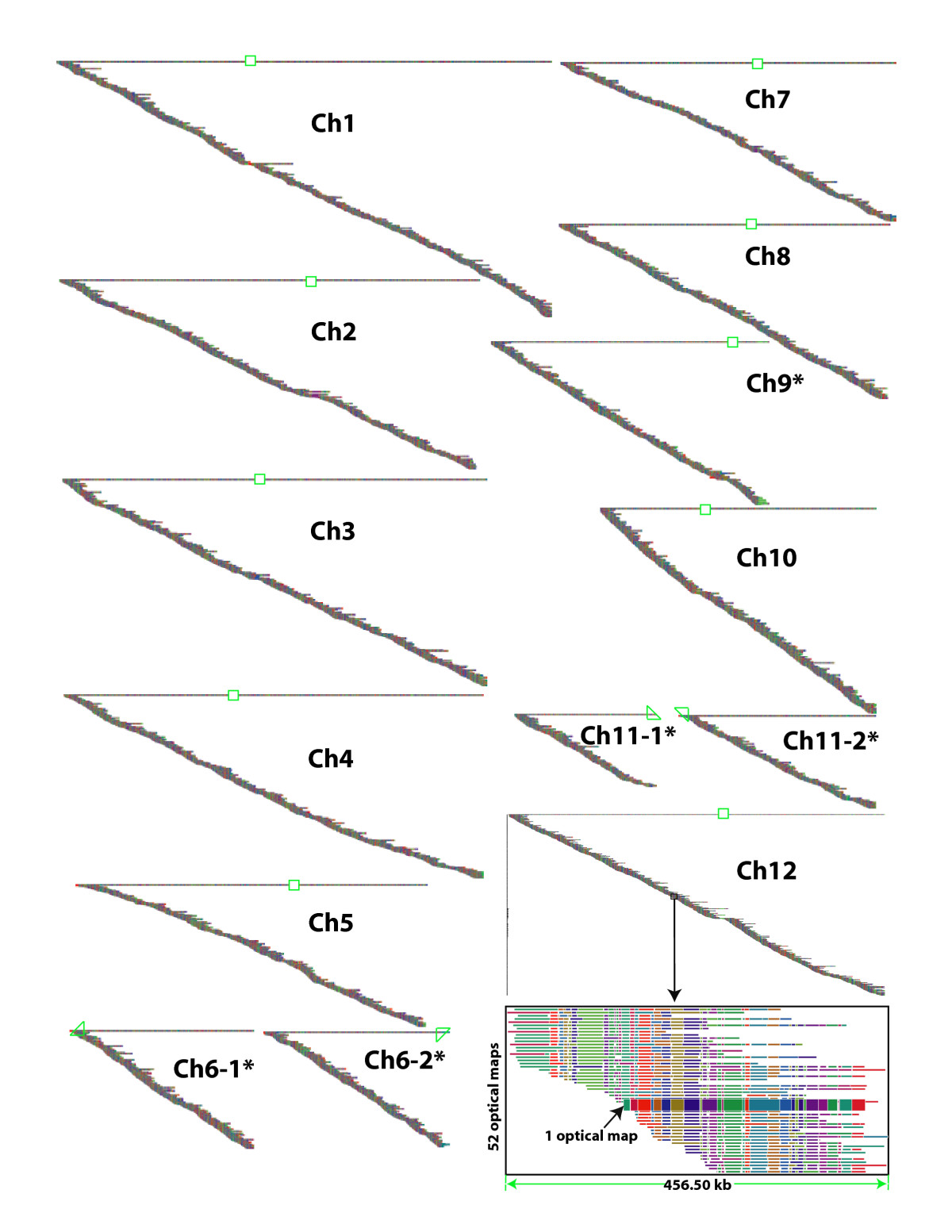 http://static-content.springer.com/image/art%3A10.1186%2F1471-2164-8-278/MediaObjects/12864_2007_Article_991_Fig2_HTML.jpg