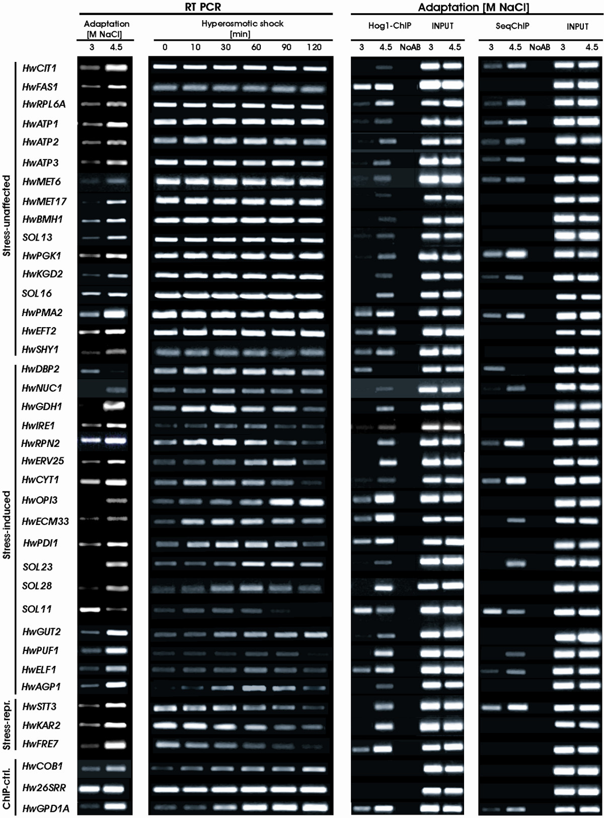 http://static-content.springer.com/image/art%3A10.1186%2F1471-2164-8-280/MediaObjects/12864_2007_Article_993_Fig2_HTML.jpg