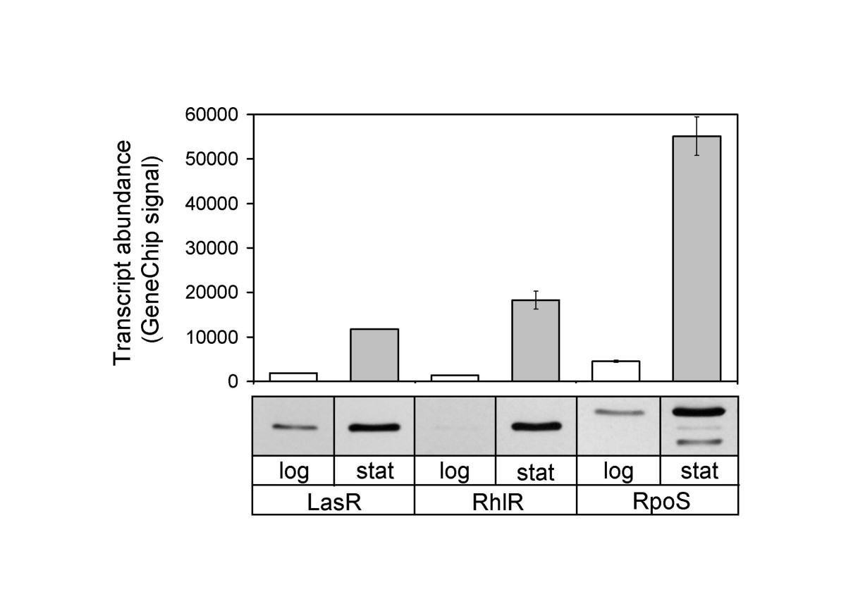 http://static-content.springer.com/image/art%3A10.1186%2F1471-2164-8-287/MediaObjects/12864_2007_Article_1000_Fig2_HTML.jpg