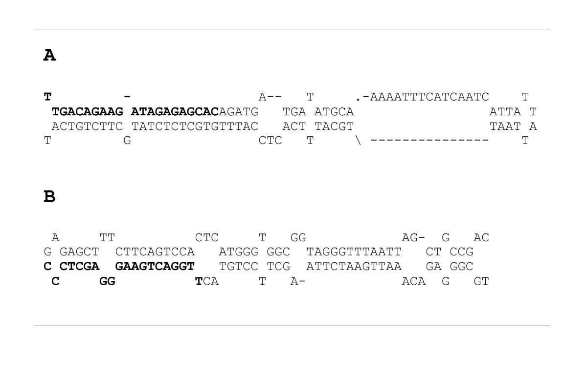http://static-content.springer.com/image/art%3A10.1186%2F1471-2164-8-306/MediaObjects/12864_2007_Article_1019_Fig3_HTML.jpg