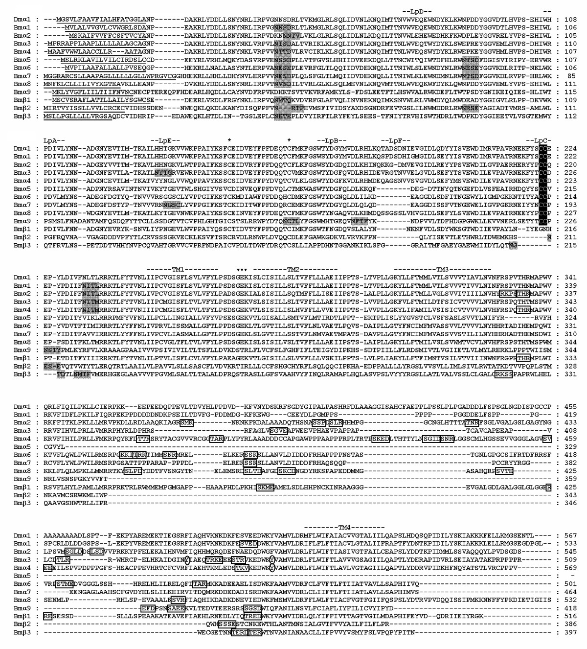 http://static-content.springer.com/image/art%3A10.1186%2F1471-2164-8-324/MediaObjects/12864_2007_Article_1037_Fig1_HTML.jpg