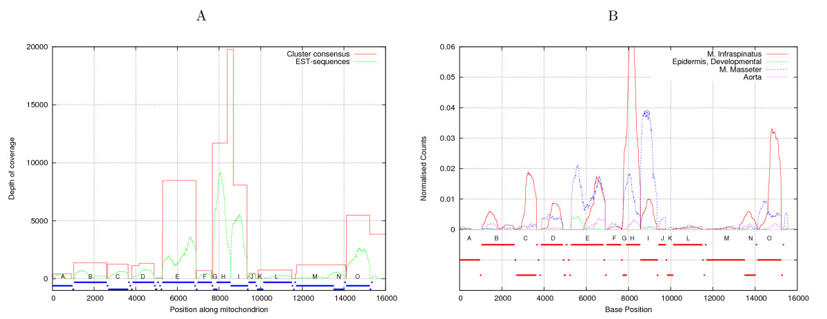 http://static-content.springer.com/image/art%3A10.1186%2F1471-2164-8-367/MediaObjects/12864_2007_Article_1080_Fig3_HTML.jpg