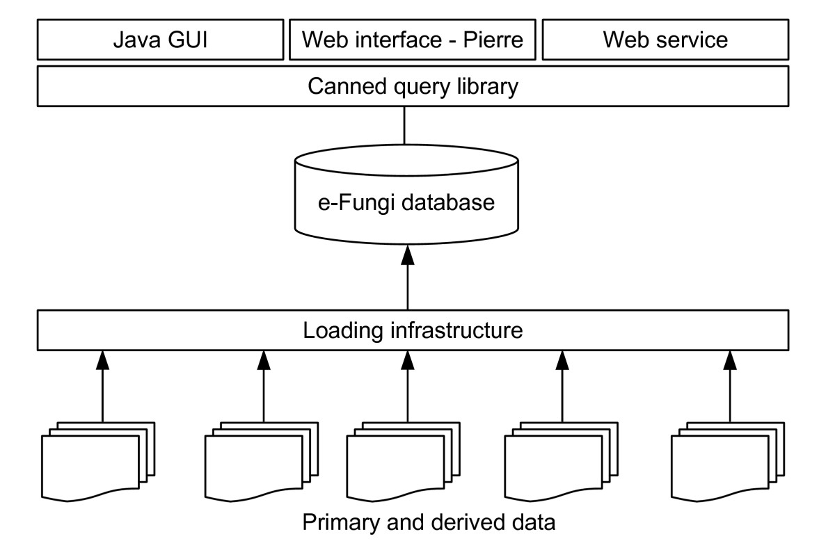 http://static-content.springer.com/image/art%3A10.1186%2F1471-2164-8-426/MediaObjects/12864_2007_Article_1139_Fig5_HTML.jpg